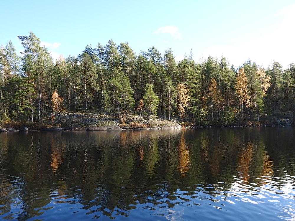 Puula, Kangasniemi